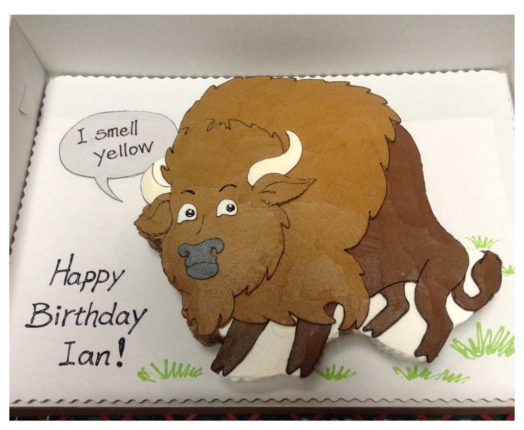 BisonBuffalo Cakeworks Blog - Buffalo birthday cake